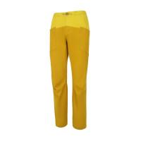 Yellow--golden palm/_5201
